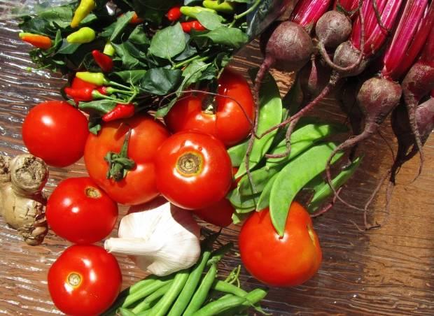 夏の野菜は効果的!
