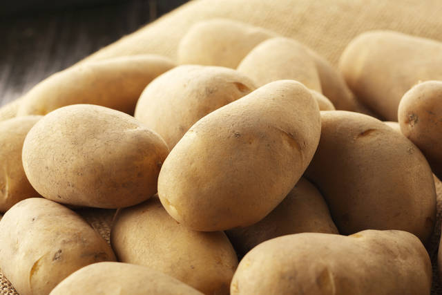 Potatoes May Queen Stock Photo 485260630 : Shutterstock (30523)