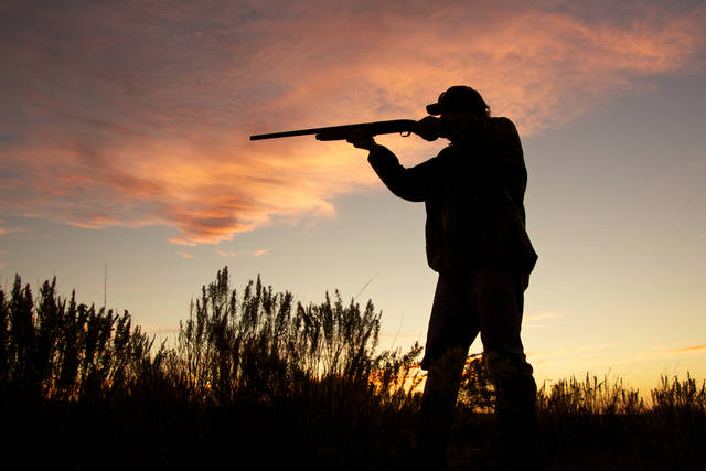 Bird Hunter Silhouetted At Sunrise Stock Photo 134066135 : Shutterstock (30534)