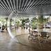 シャボン玉の中に会議室?植物の蔦が天井を這う面白いオフィス♪