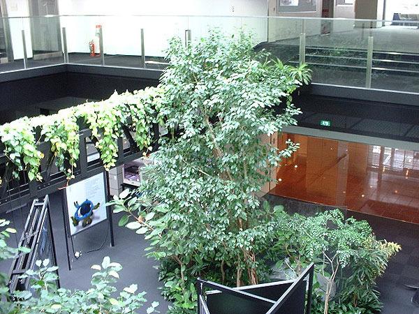 http://www.ecogreen.ne.jp/planet/green/image/ryoku_espec_06t.jpg (887)