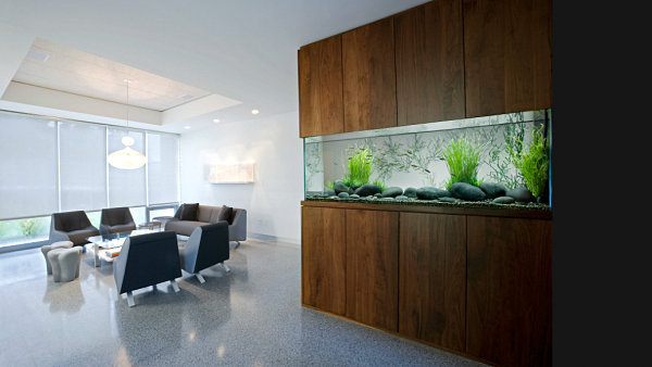 Cool Fish Tanks for Your Office (7160)