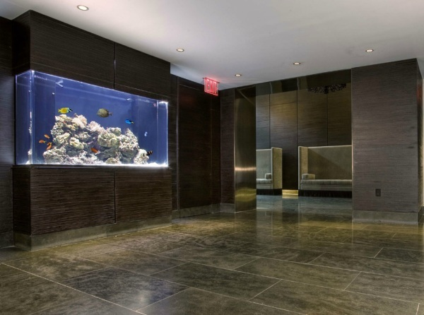 Cool Fish Tanks for Your Office (7165)