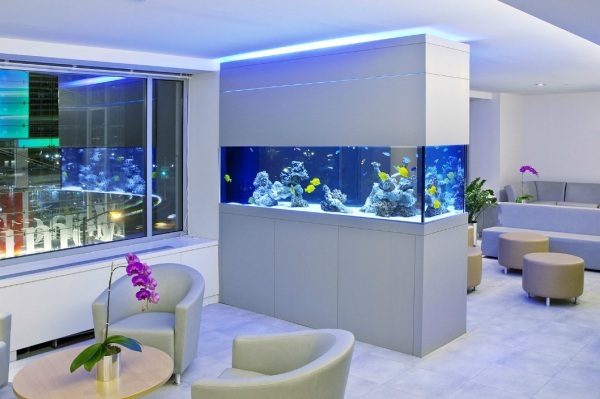 Cool Fish Tanks for Your Office (7167)