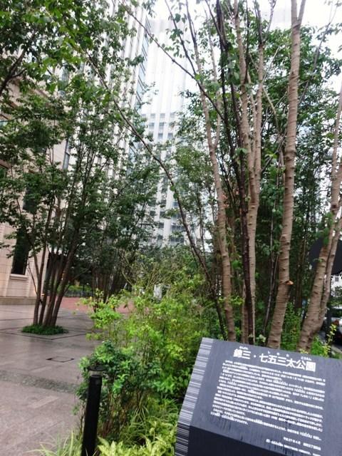 敷地内にある、錦三・七五三太公園