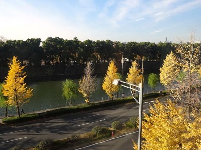 岸本ビルディングからの眺望