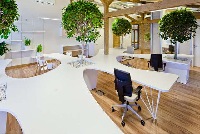 office snapshots (12564)