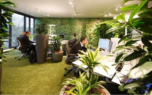 office snapshots (12565)