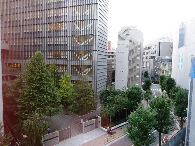 三番町東急ビル 眺望