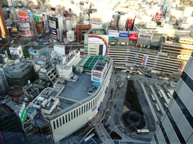 新宿エルタワー 眺望①