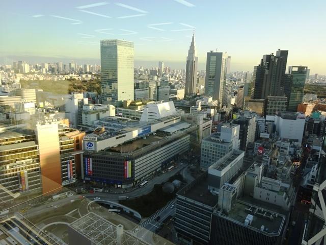新宿エルタワー 眺望②