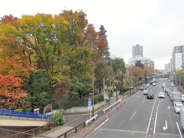 天現寺交差点歩道橋からの眺め