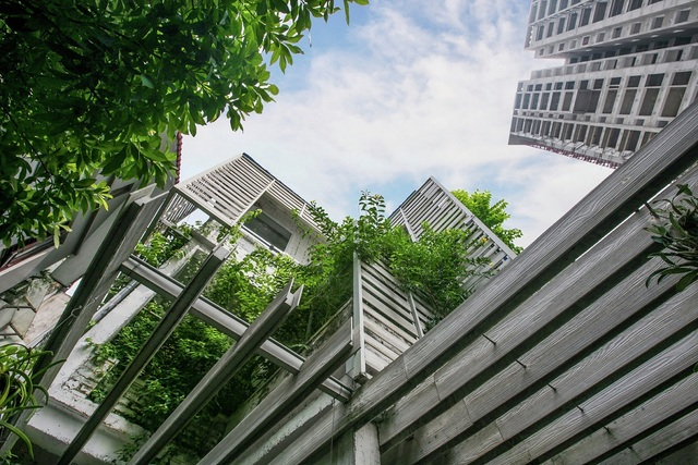 Growing Green Office / Studio 102 | ArchDaily (17840)