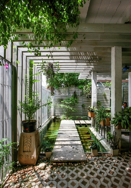Growing Green Office / Studio 102 | ArchDaily (17849)