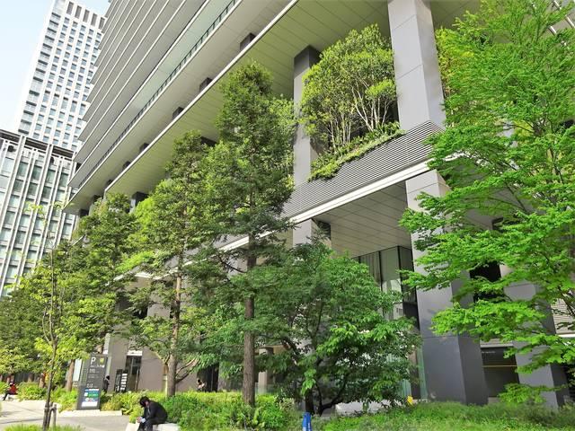 東京スクエアガーデン植栽