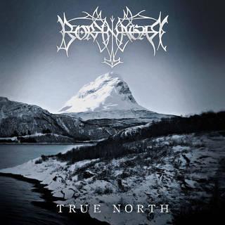ノルウェー産プログレッシヴ・ブラックメタル11th BORKNAGAR『True North』