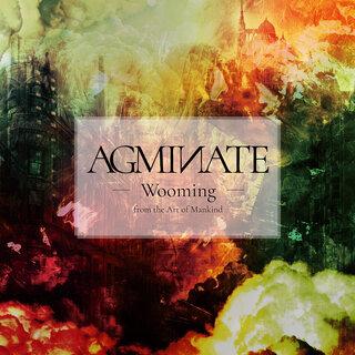 the Art of Mankindのギタリスト Wooming、幾多のミュージシャンと共に作り上げた初のソロ作品「AGMINATE」をRepentlessより2021年1月27日(水)リリース!