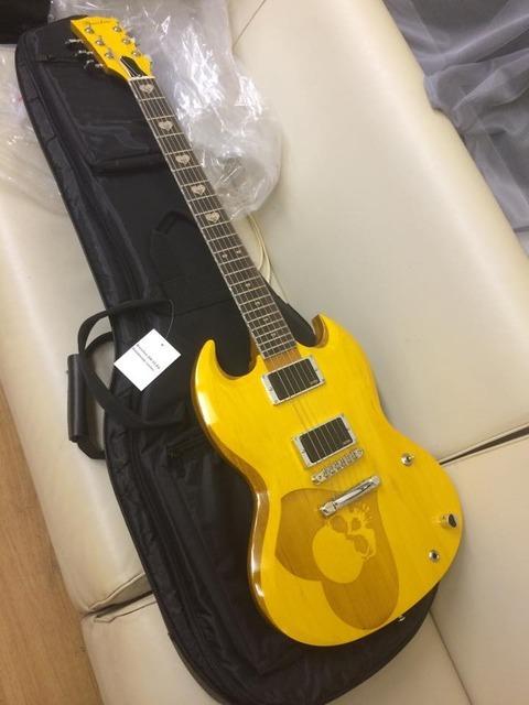 これからもうちのギターでガンガンにメタルしてください。