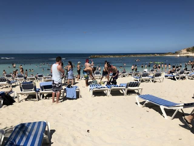 日光浴や海水浴を楽しむ人々 貸し切りなので全員メタラー