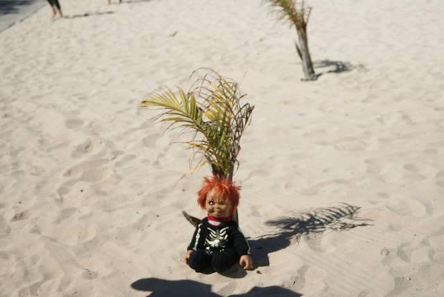 ハイチなのでヴードゥーの呪い人形も忘れちゃいけない! ...