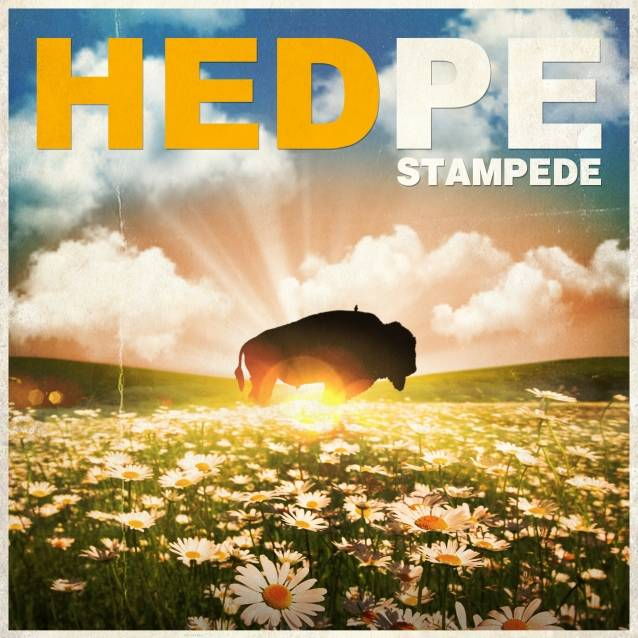 (HED) P.E. / Stampede