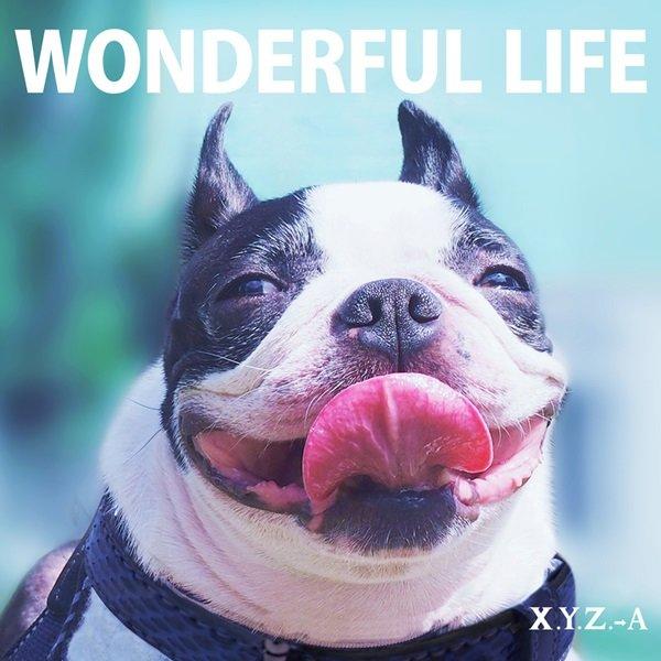 X.Y.Z.→A 「WONDERFUL LIFE」