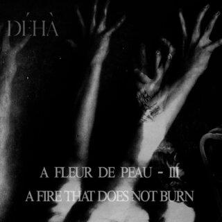 ベルギーのポスト・ブラック・メタル・プロジェクトDéhàがニュー・アルバムをリリース