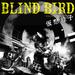 BLIND BIRD official web site