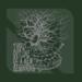Lucio Manca Official Website - Bassist / Composer / Solo Artist / Writer
