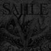 SAILLE Official Website