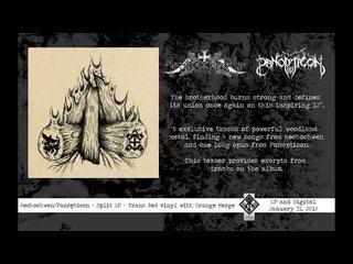 大注目ブラック・メタル・バンドPANOPTICONとNECHOCHWENが来年1月にSplitをリリース