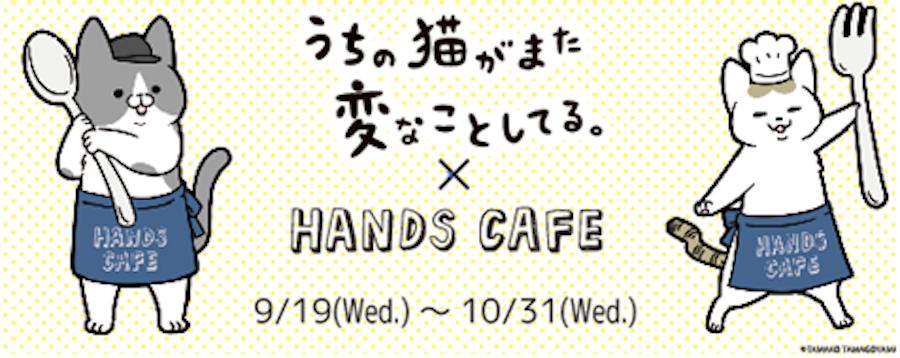 大人気漫画とのコラボカフェ「うちの猫がまた変なことしてる。×ハンズカフェ」が実現