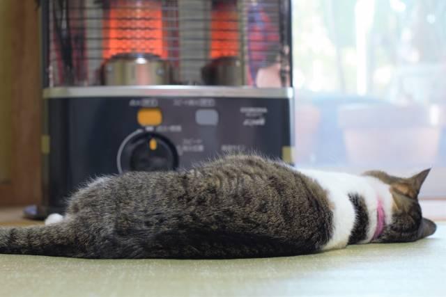 一人暮らしの暖房はどう選ぶ? 知っておくべき暖房のメリット・デメリット