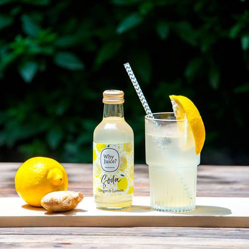 Why Juice? ジンジャーレモンソーダ