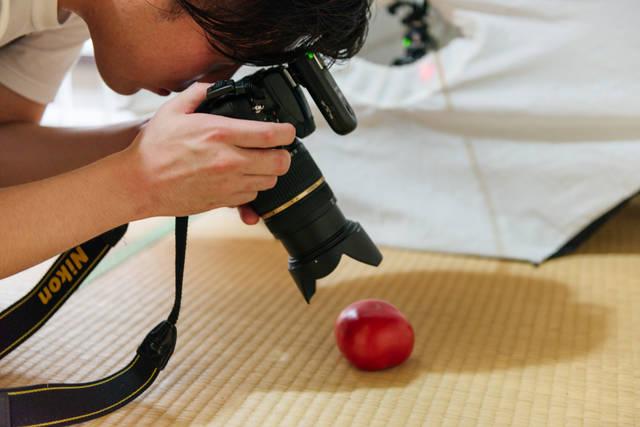 稲田さん トマト 撮影