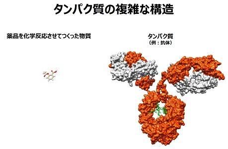 タンパク質の複雑な構造