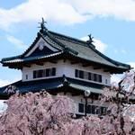 Big Hugs from Cherry Blossoms in Hirosaki, Aomori
