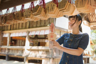Love, Money Or Success in Your Career? A Guide to Nikko's Shrines For A Specific Wish
