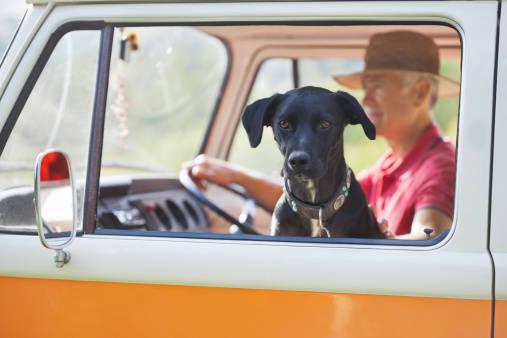 【犬も同伴可能】一緒に観光できる水族館☆マナーと注意点☆