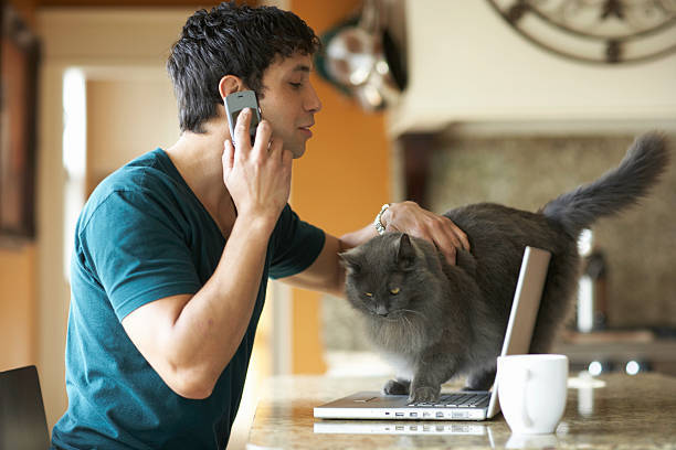 Young man petting cat while talking on cell phone in domestic kitchen
