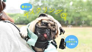 これがあれば夢の愛犬とのサイクリングが実現!快適な犬用バッグをご紹介