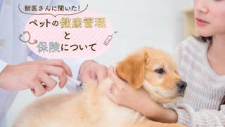 獣医師に聞く、ペットの病気や治療の最新事情。そしてペット保険とは?