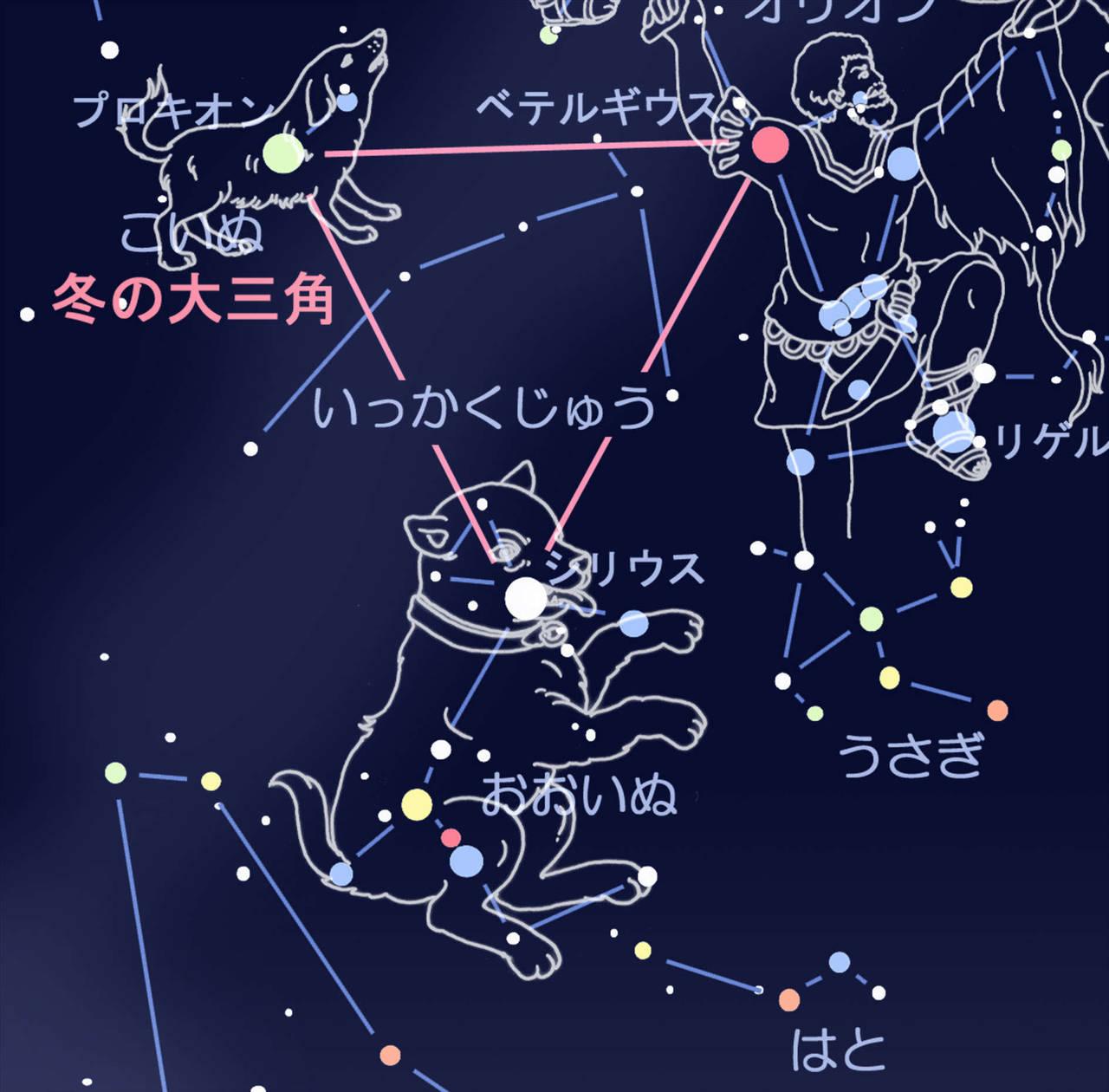 12星座にはないけど48星座にはある「おおいぬ座」と「こいぬ座」知っていますか?