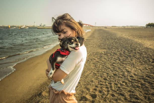 夏は愛犬を連れてお泊まり旅行!千葉県の犬と泊まれる宿泊施設5選!