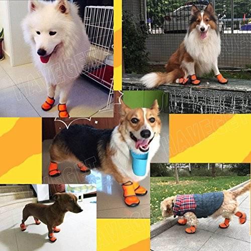 HAVEGET ドッグブーツ 犬用靴 愛犬のお散歩 滑り止め 雨の日 柔らか 軽い 中型、大型犬にもフィット 7サイズ選べる ドッグシューズ 犬靴(XXS)|日本商品の海外転送・購入ならSAMURAI BUYERにお任せ!国際配送でお届けします (821)