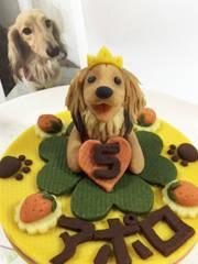 犬用ケーキ・おやつの店ロビナ