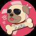 愛犬=アイドルを紹介するインスタハッシュタグ「#いぬドル」とは!? - わんこキャンプ