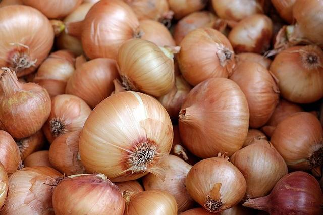 Onions Vegetables Food · Free photo on Pixabay (1874)