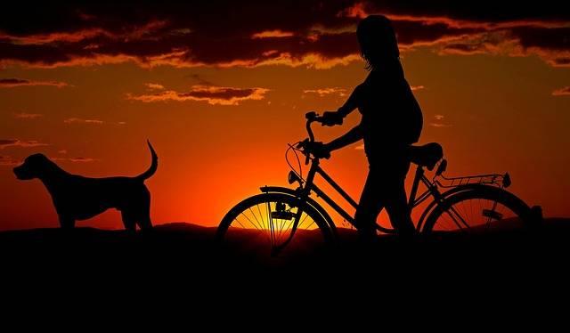 Woman Girl Bike · Free photo on Pixabay (1962)