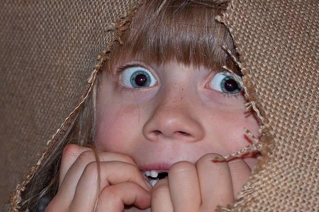Person Human Girl · Free photo on Pixabay (316)